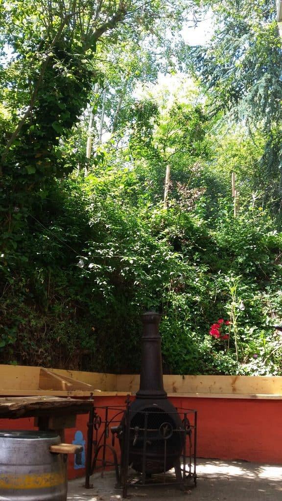beer garden 2021 chiminea trees